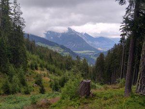 Auf dem Alten Almweg mit Blick ins Tal